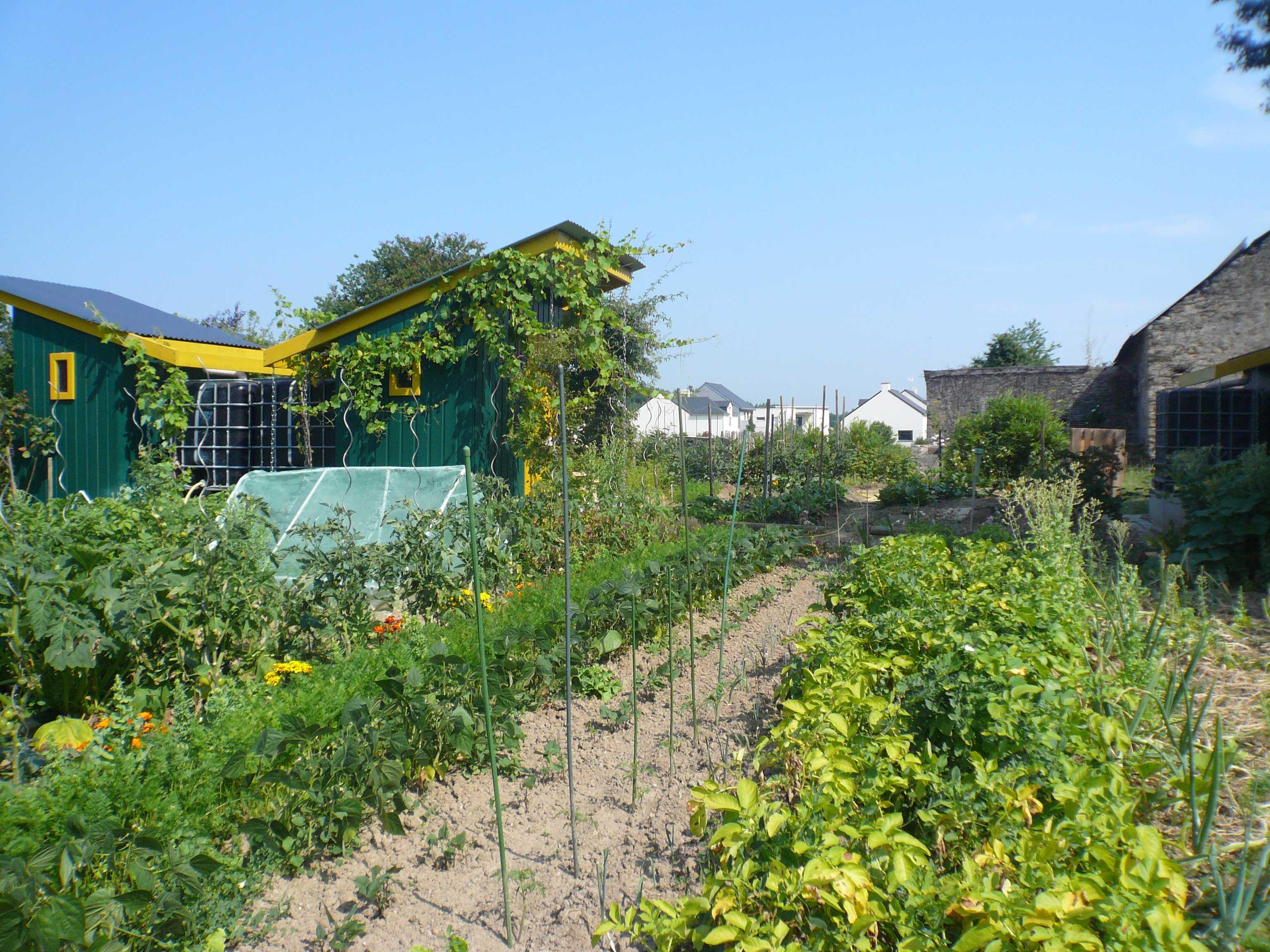 Le jardinage et le compostage