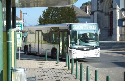 Bus en centre-ville
